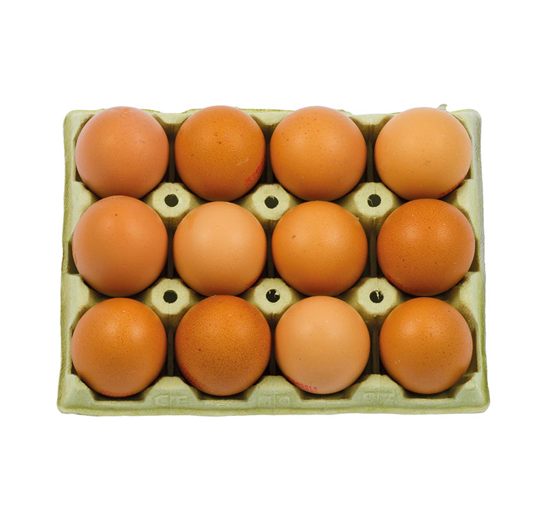 huevo-fresco-moreno-retractilado