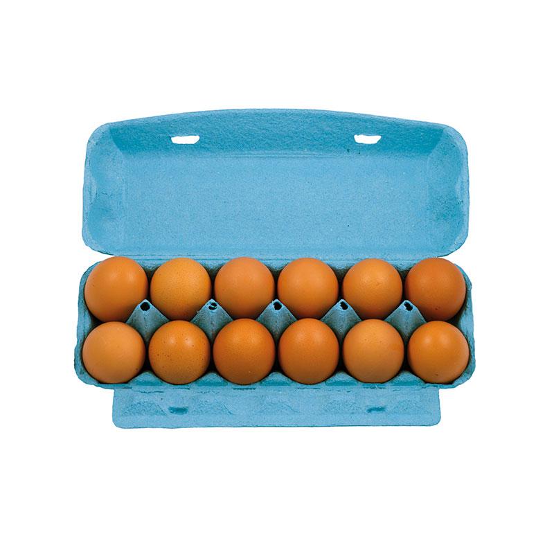 huevo-moreno-fresco-cartón