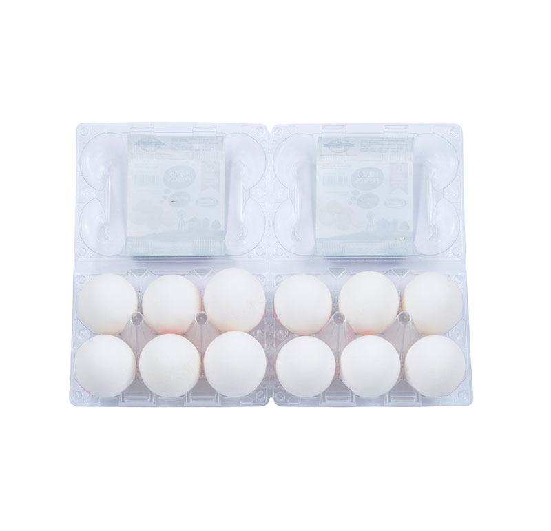 huevo-xl-plastico