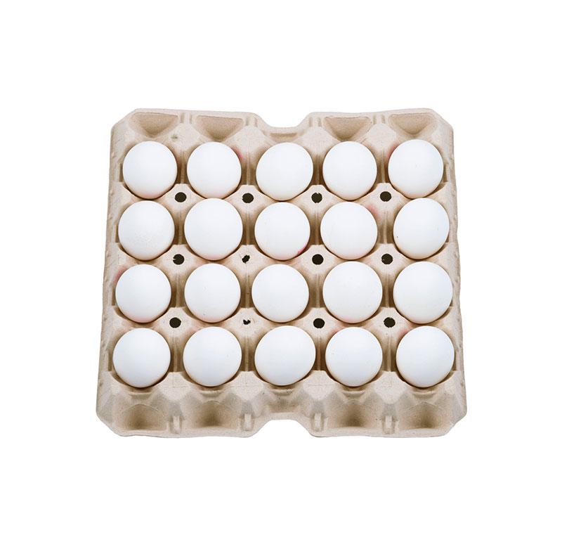 huevo-bandeja-30-blanco