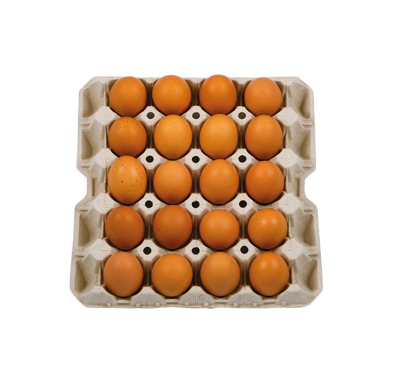 huevo-bandeja-30-moreno