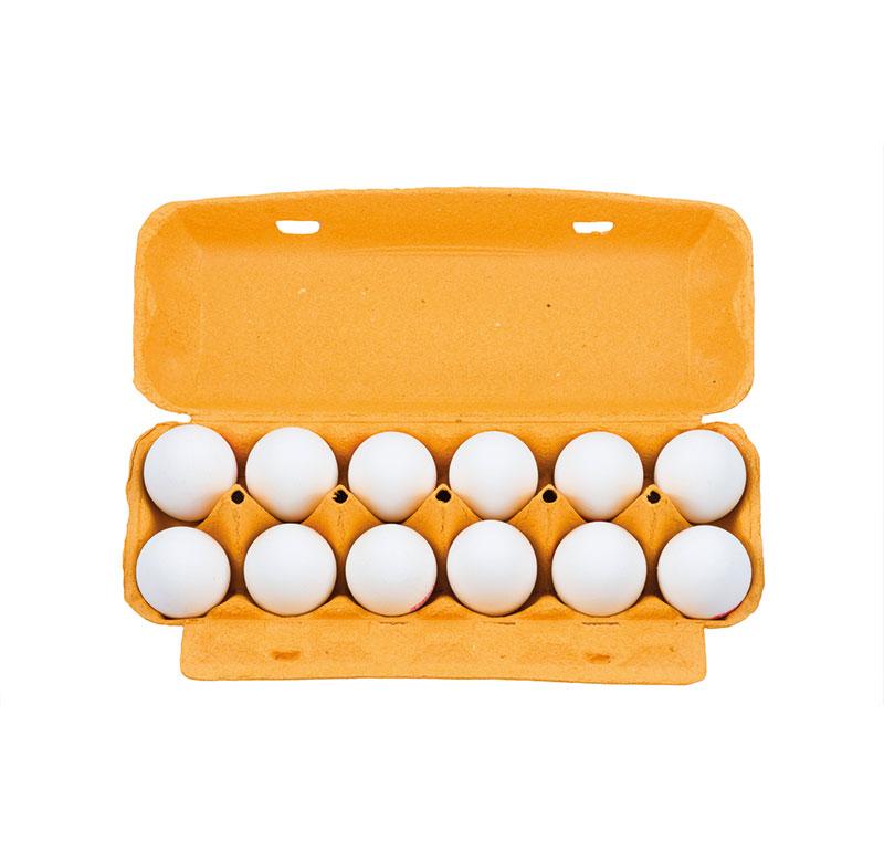 huevo-blanco-fresco-cartón